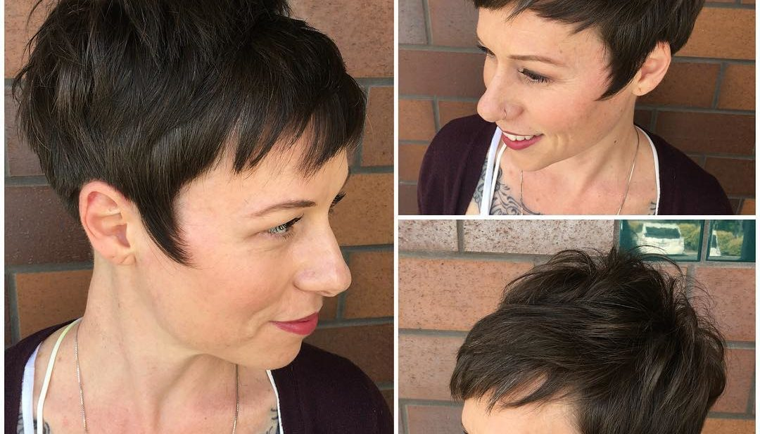 Brunette Messy Textured Fringe Pixie with Wispy Sideburns Short Hairstyle